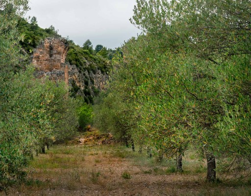 Chelva, barranco de Alcotas. Valencia. 2012